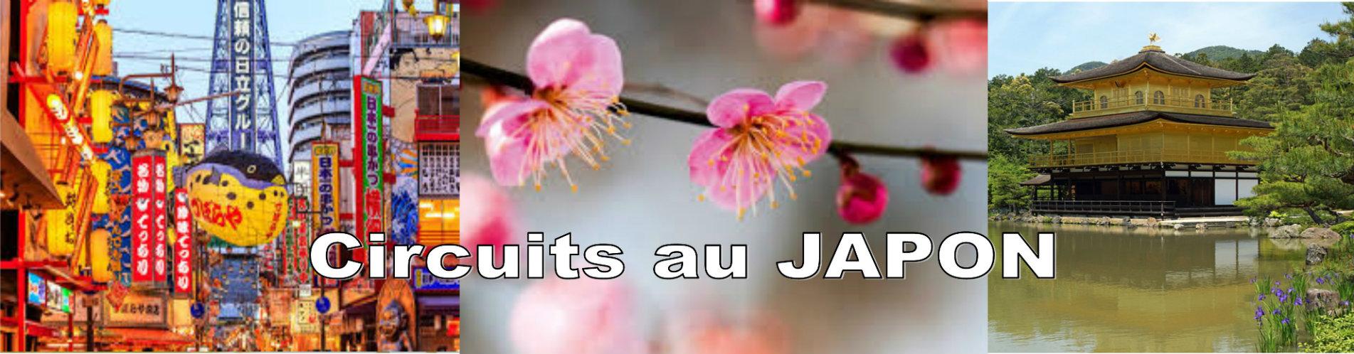 Tours Japon